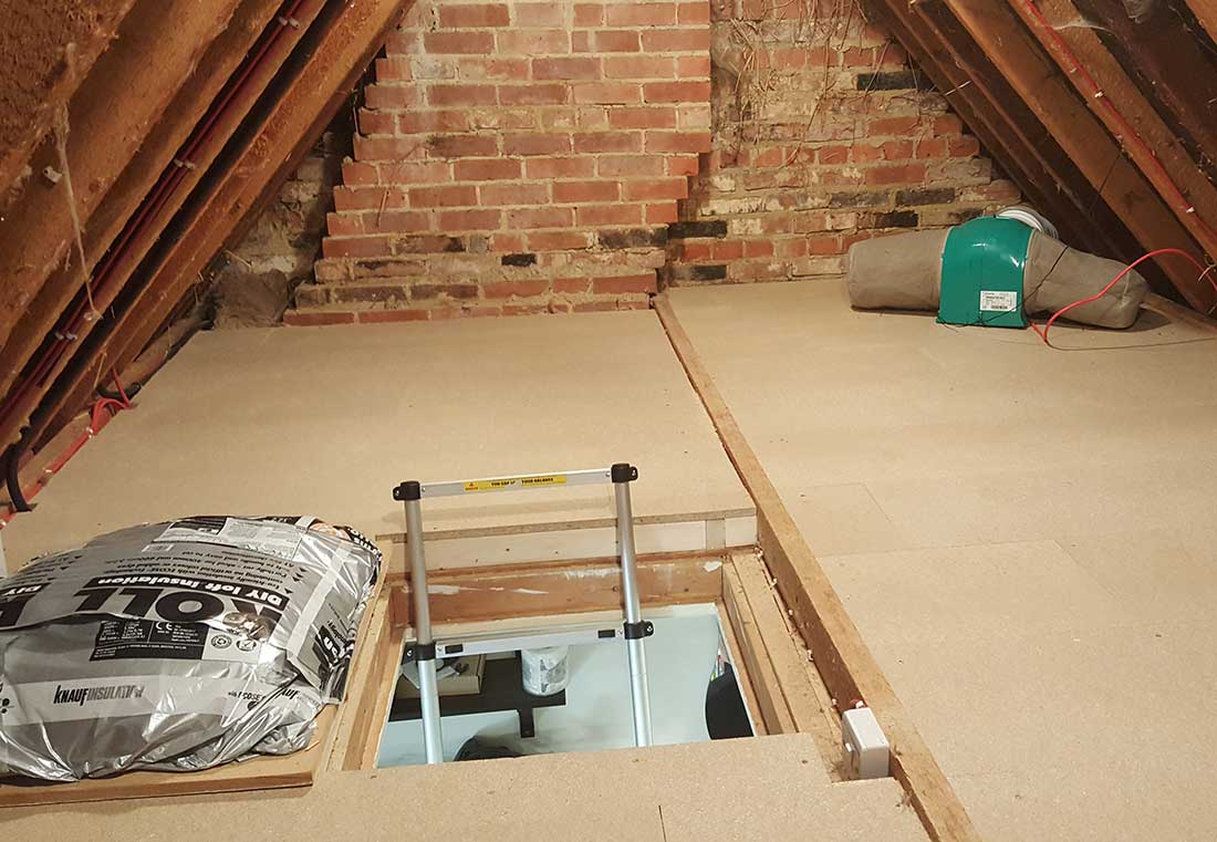 Pest Removal & Loft Clearance Experts